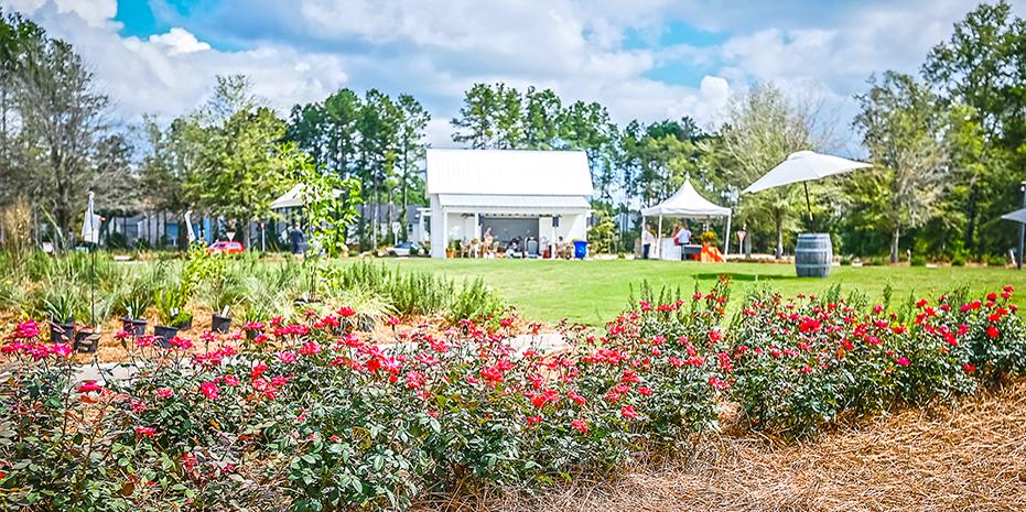 Outdoor Park in the North Charleston Neighborhood of Summerville