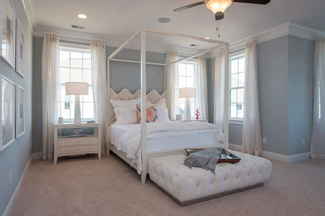 241 Bumble Way a Dan Ryan Builders Master Bedroom View in Summerville, SC