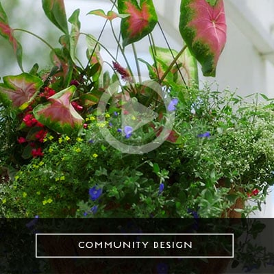 community-design-video-thumb