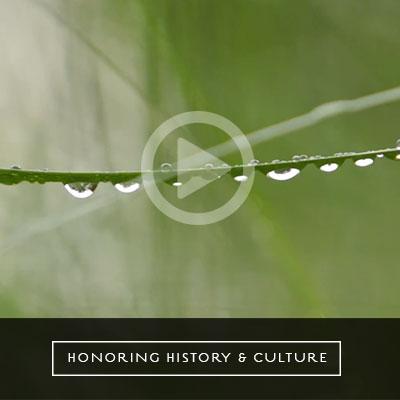 honor-history-culture-video