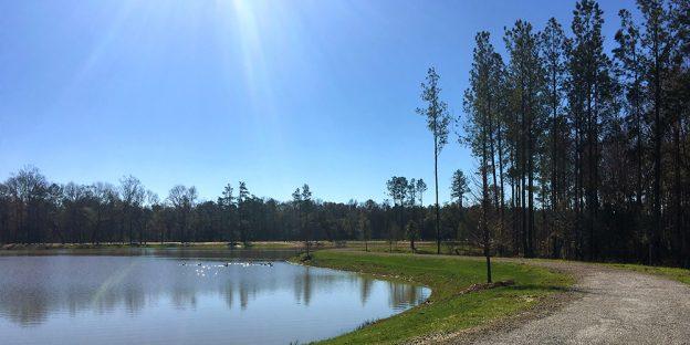 archer-lake