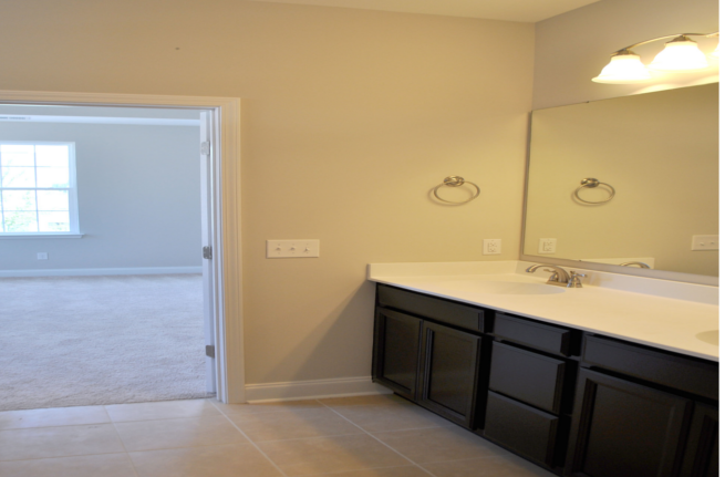 441 Watergrass Way a Sabal Homes Master Bathroom View in Summerville, SC