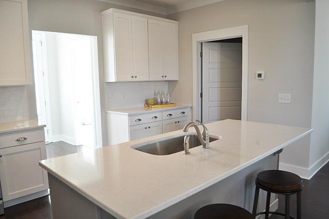 113-canopy-kitchen-2-web